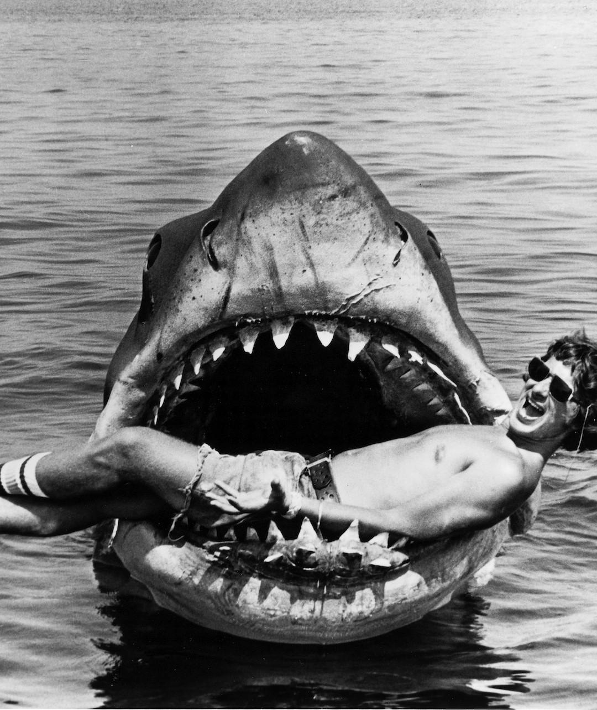 El tiburón ataca de nuevo